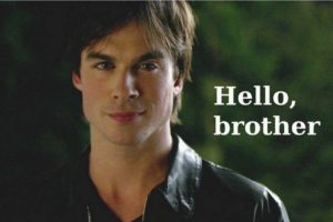 hello-brother-damon-salvatore-35350533-500-334